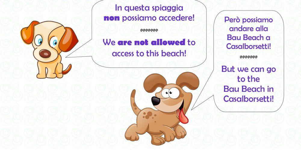 http://www.campingreno.it/wp-content/uploads/2018/06/vietato-cani-in-spiaggia.jpg
